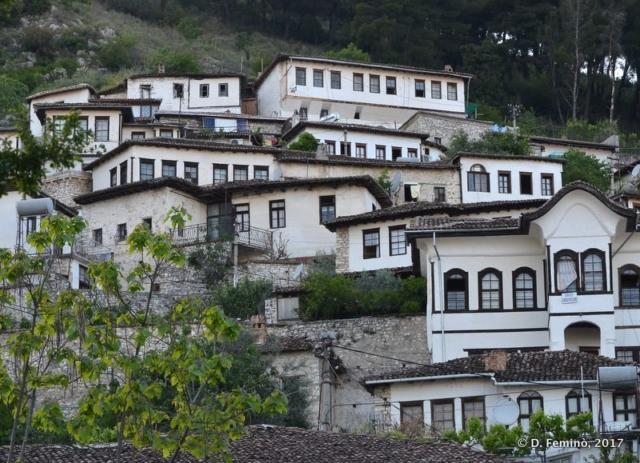 Houses in Mangalam (Berat, Albania, 2017)