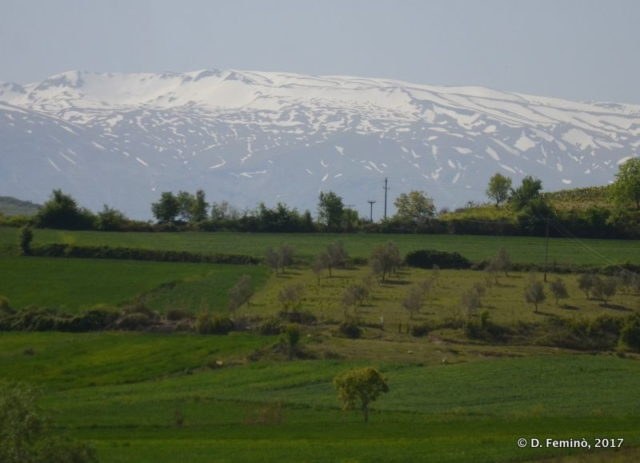 Snow in April (Albania, 2017)