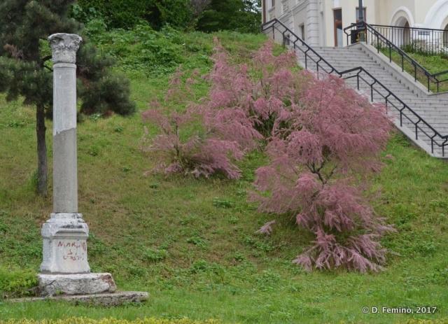 Roman column (Constanța, Romania, 2017)