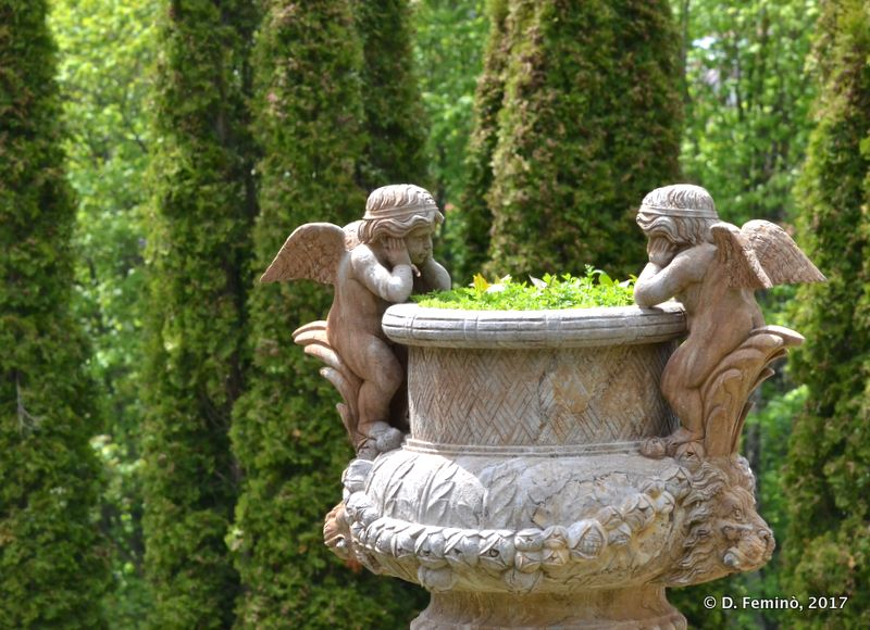 Angels in Cantacuzino Castle (Busteni, Romania, 2017)
