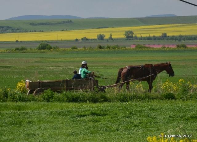 Rural Romania (2017)