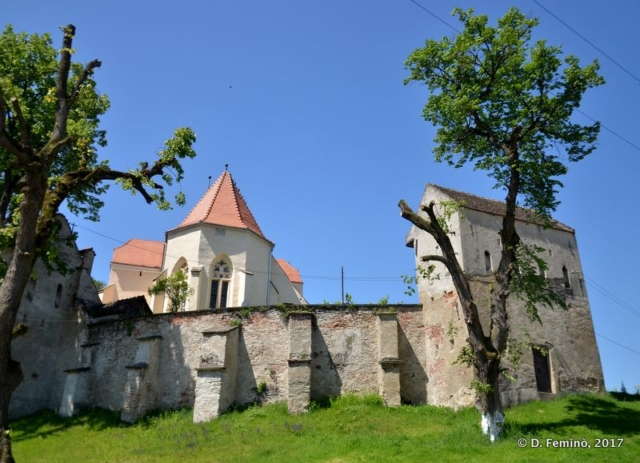 Fortified church (Şaroş pe Târnave, Romania, 2017)