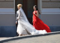 Elegant women