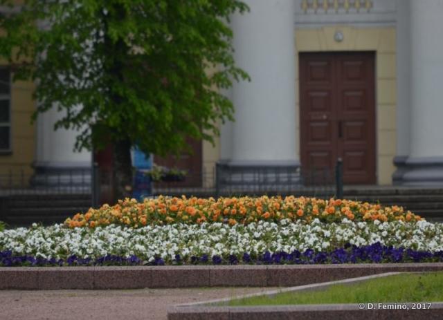 Flowerbed (Novgorod, Russia, 2017)