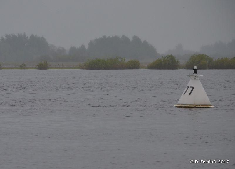 Buoy in Yuryevskiy pond (Novgorod, Russia, 2017)