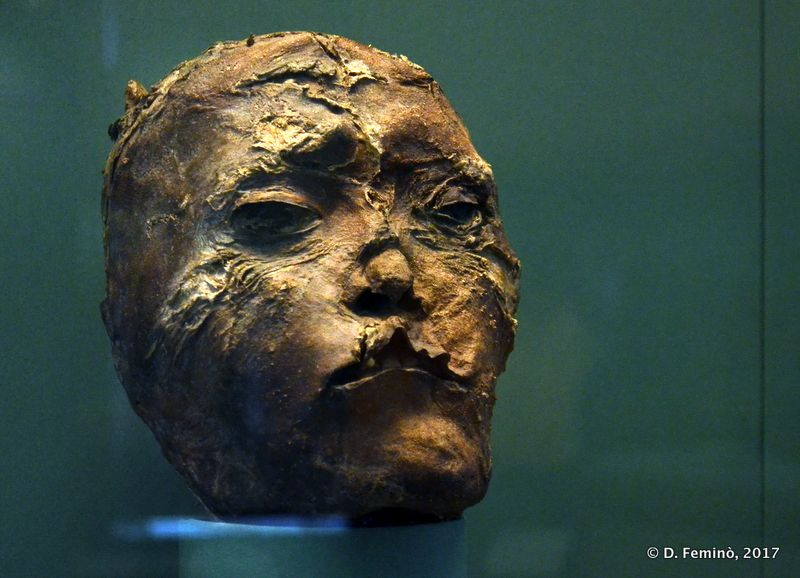 Mummified head of a chief