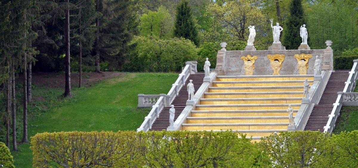 Golden stairs in Peterhof