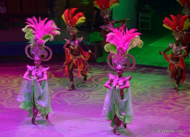 Oriental dance (Circus, Tyumen, Russia, 2017)