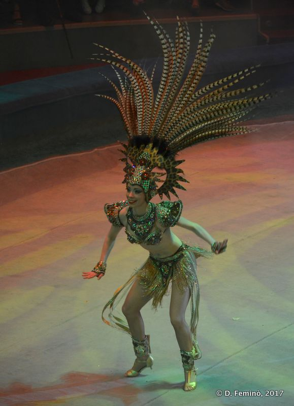 Dancer (Circus, Tyumen, Russia, 2017)