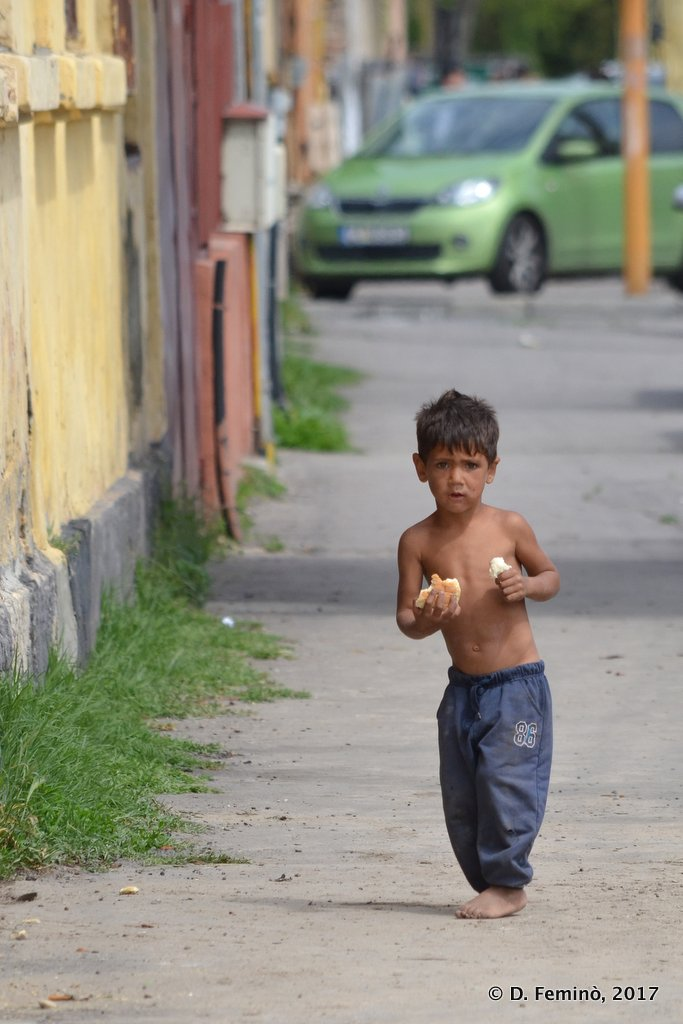 Constanta, little boy in the street
