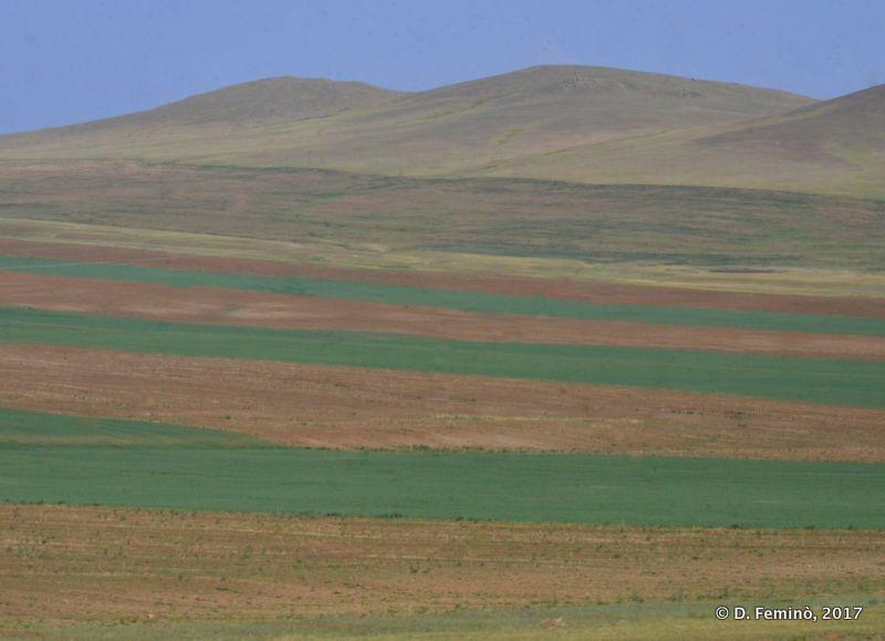 Multicolour landscape (Mongolia, 2017)