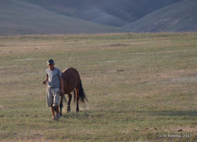 A man and his horse (Mongolia, 2017)