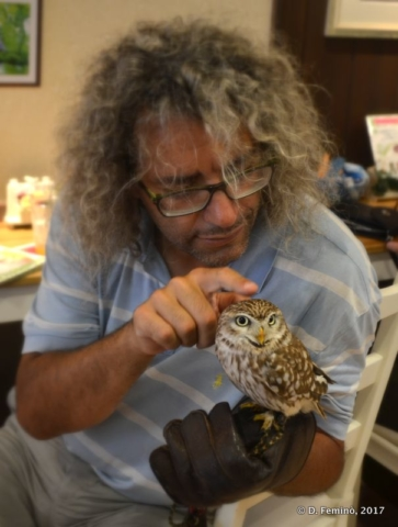 In the owl's cafe in Nara