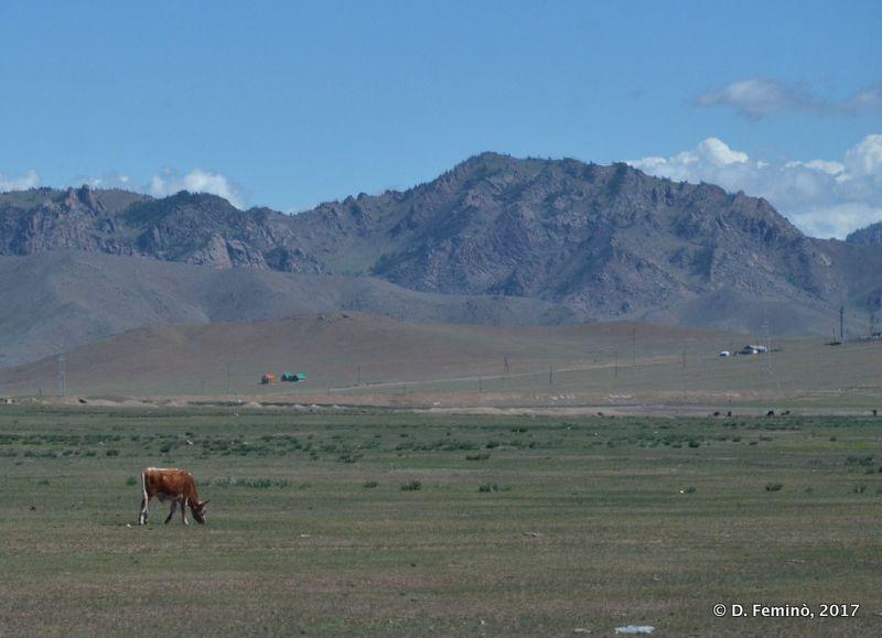 Landscape (Terelj Park, Mongolia, 2017)