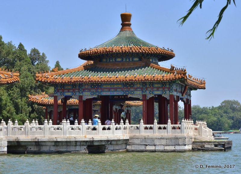Dragon pavilions