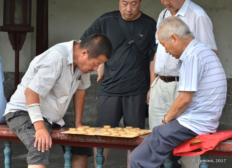 Playing Xiangqi