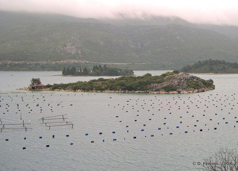 Lagoon (Peljesac Peninsula, Croatia, 2008)