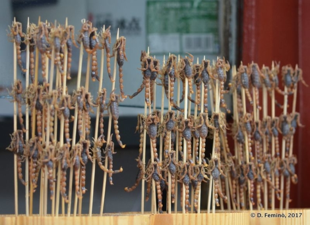 Scorpion skewers (Beijing, China, 2017)