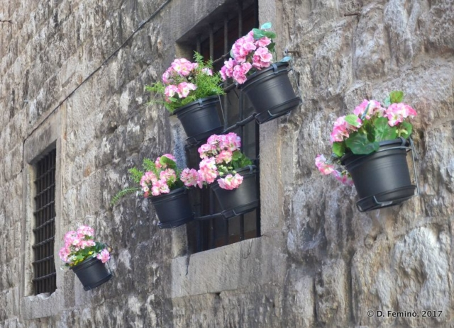 Flowered walls (Split, Croatia, 2017)