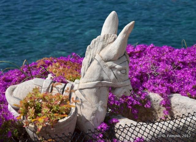 Garden by the sea (Milna, Croatia, 2017)