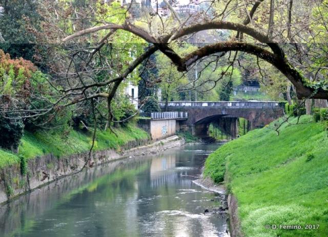 Bacchiglione creek (Vicenza, Italy, 2017)
