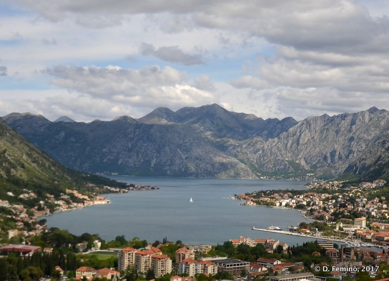 View of the town and the bay (Kotor, Montenegro, 2017)