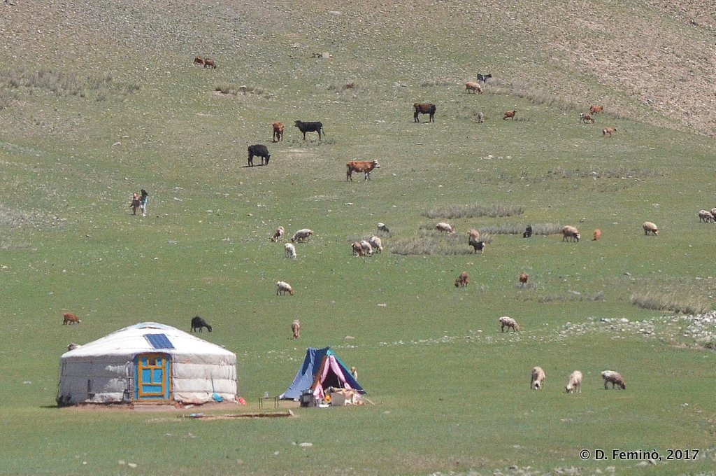 Mongolian landscape with a ger, Terelj National Park
