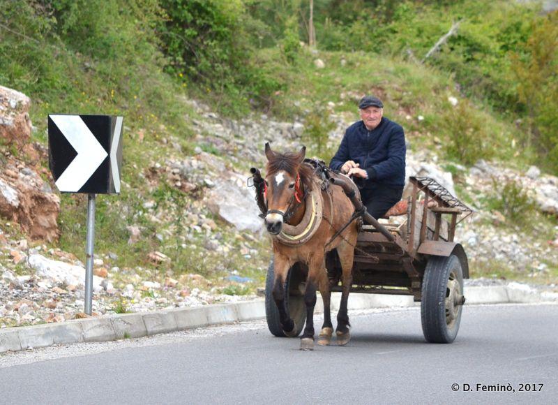 Cart on the road (Lake Skadar, Albania, 2017)