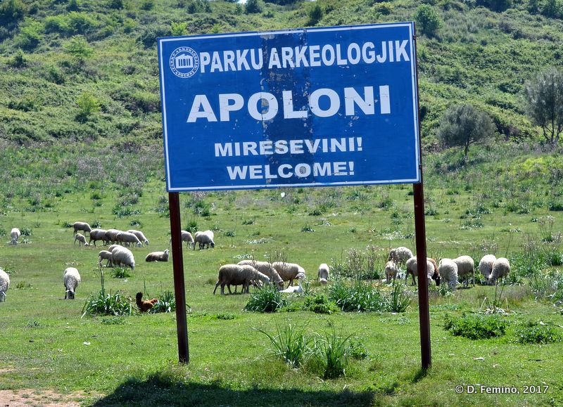 Welcome to Apollonia (Apollonia, Albania, 2017)