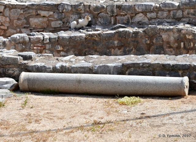 Roman column (Sarandë, Albania, 2017)