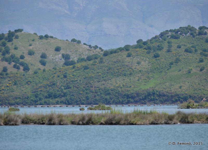 Landscape (Butrint, Albania, 2017)