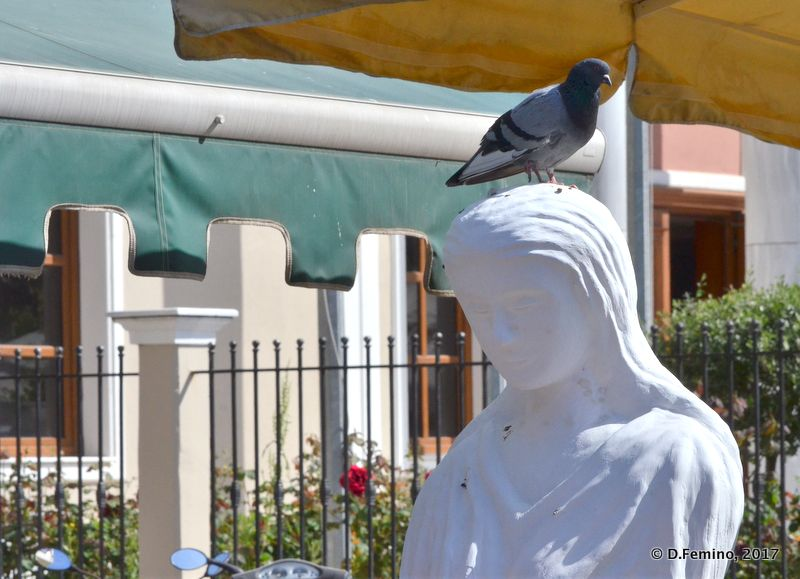 Pigeon on a statue (Alexandroupoli, Greece, 2017)