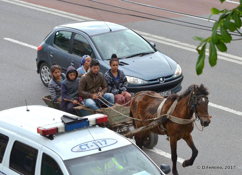 Alternative mean of transport (Constanța, Romania, 2017)