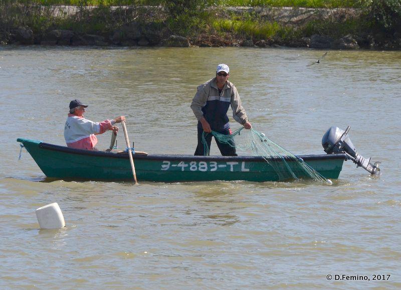 Fishing in the canal (Danube Delta, Romania, 2017)