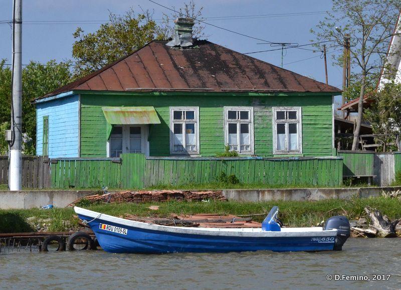 A nice glimpse (Danube Delta, Romania, 2017)