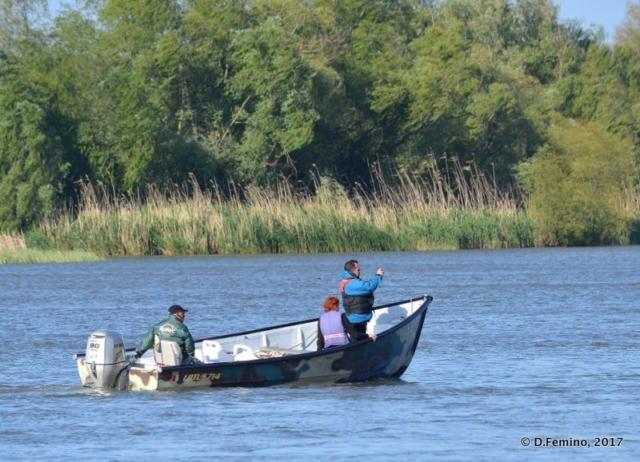 Small boat cruising the Danube branch (Sulina, Romania, 2017)