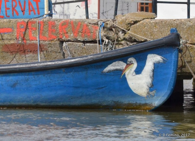 Painted pelican on the boat (Sulina, Romania, 2017)