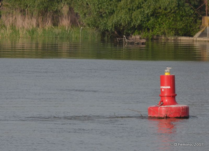Red buoy (Danube Delta, Romania, 2017)