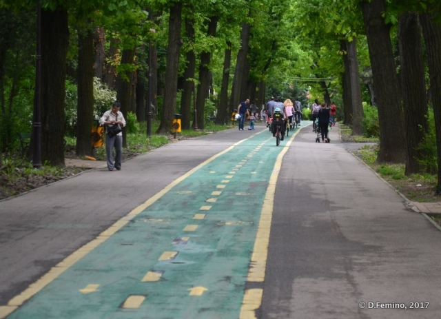 Bike path in Herăstrău Park (Bucharest, Romania, 2017)