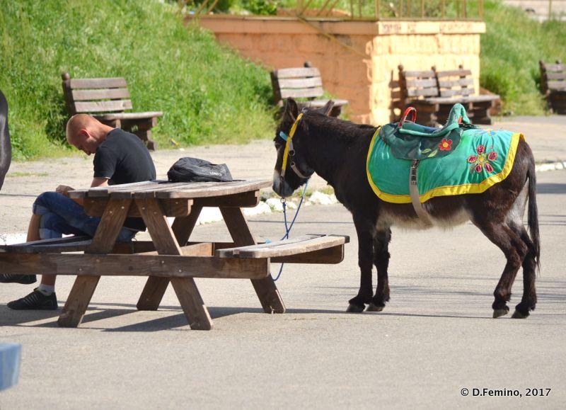 Some rest (Tiraspol, Trasnistria, 2017)