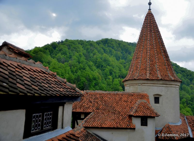Roofs of the castle (Bran, Romania, 2017)