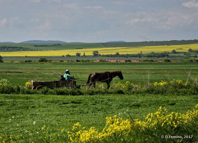 Romanian landscape (Hărman, Romania, 2017)