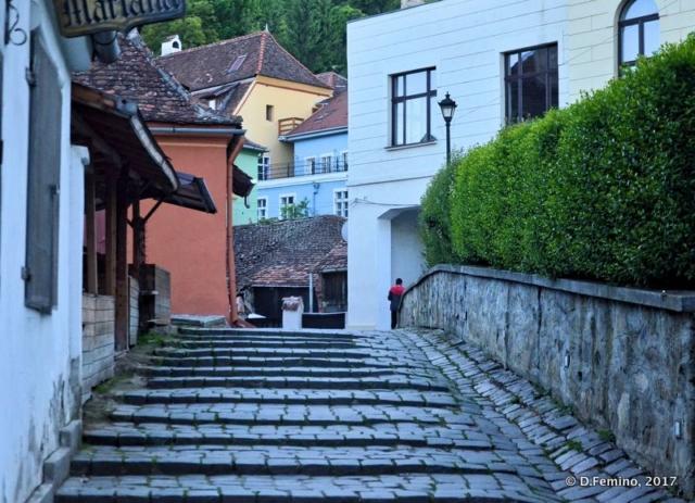 Stairs to upper town (Sighișoara, Romania, 2017)