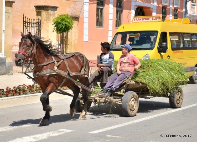 Cart (Biertan, Romania, 2017)