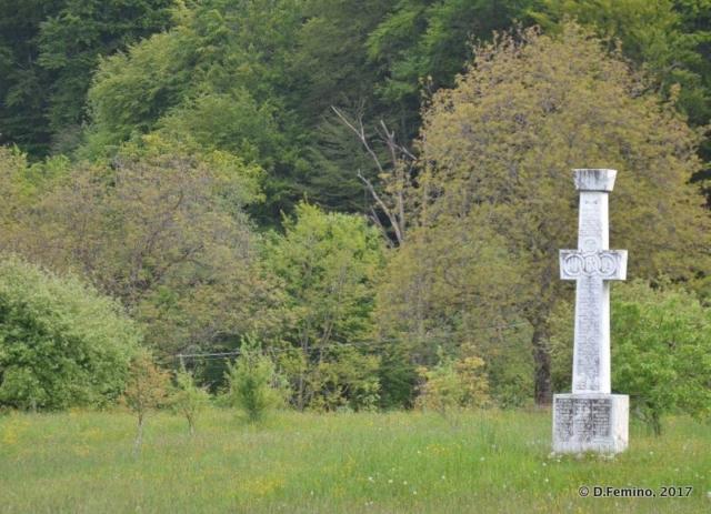 Cross in the green (Sâmbăta de Sus, Romania, 2017)