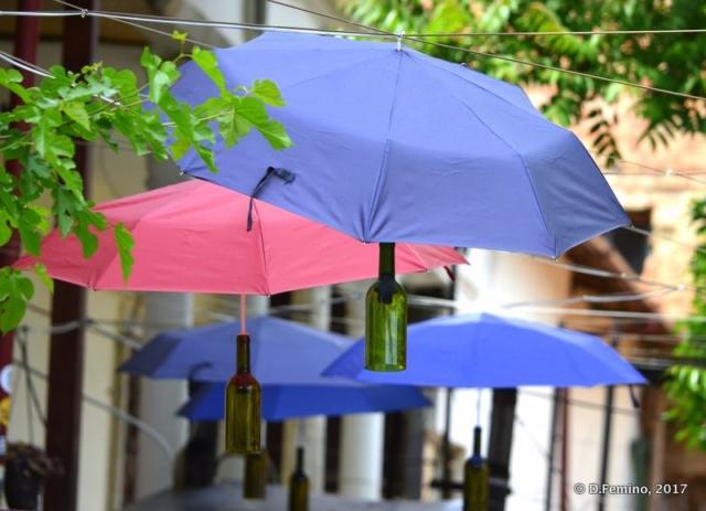 Umbrellas and bottle (Iași, Romania, 2017)