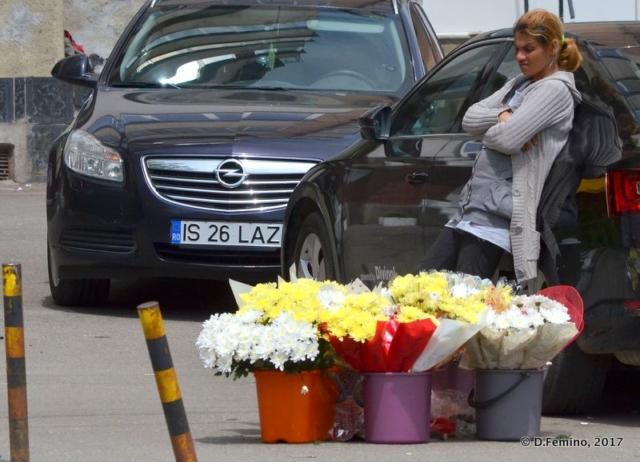 Flower selling (Iași, Romania, 2017)