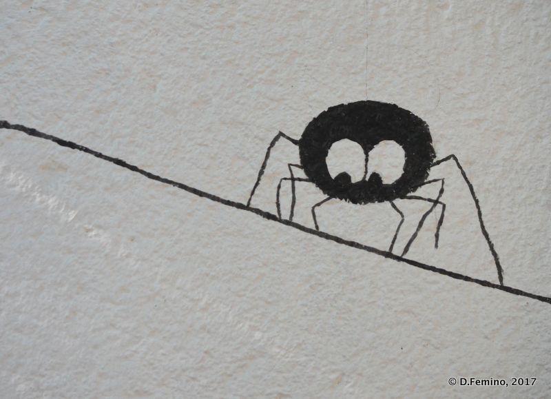 Little spider on a wall (Odessa, Ukraine, 2017)