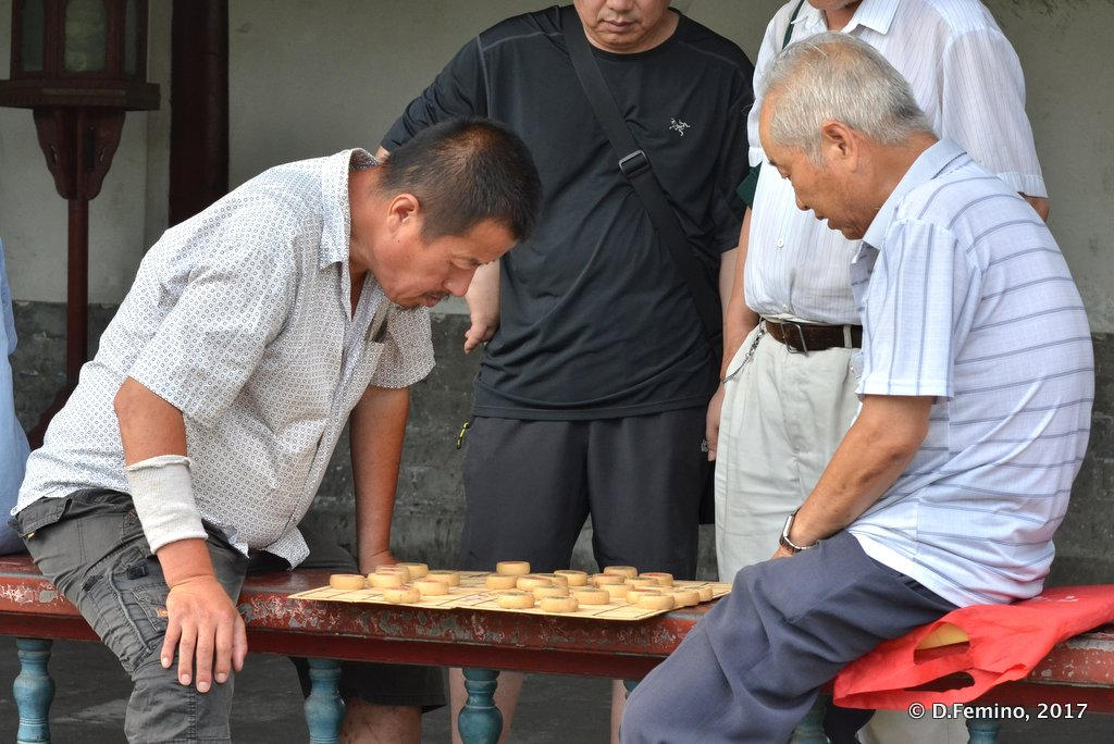 Playing Xiangqi (Chinese chess)