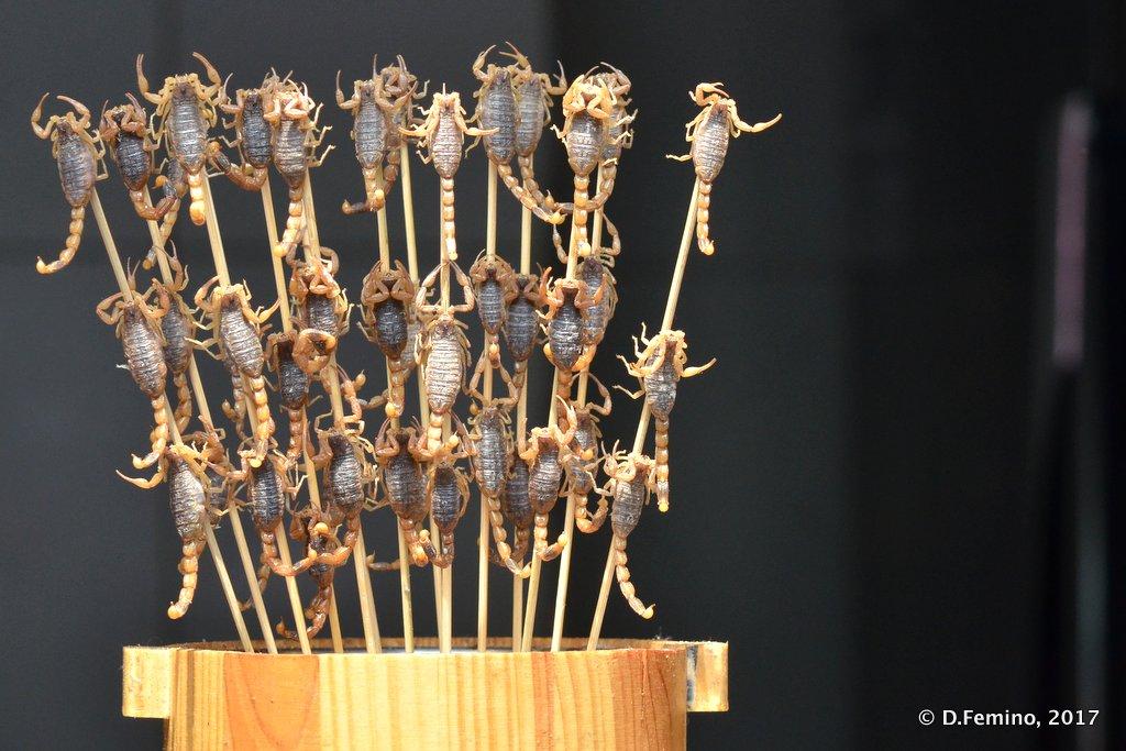 Scorpion snack
